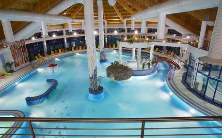 Celodenní vstup do bazénového světa slovenského hotelu Patince ****