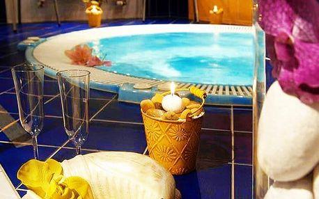 3–6denní wellness pobyt pro 2 osoby s polopenzí v hotelu Iris*** na Pálavě