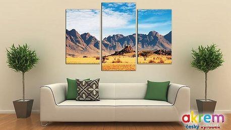 3dílný obraz s 3D efektem a rozměry 75x50 cm s pestrou škálou motivů