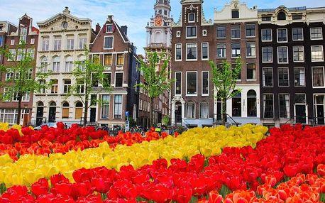 Holandsko 2018, Amsterdam, burza květin, Alkmaar, Zaanse Scha...
