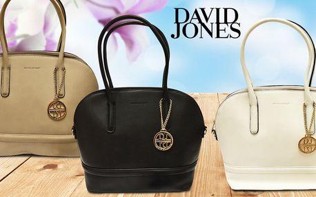 Dámské kabelky David Jones