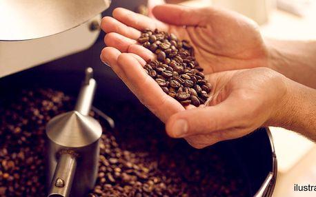 Celodenní kurz kávy: 7 hodin teorie i praxe