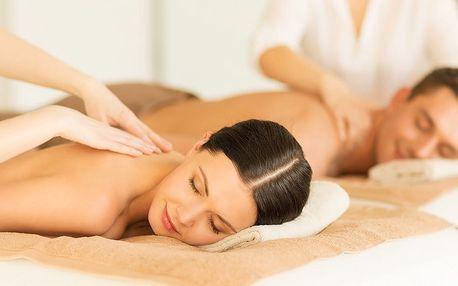 3 nebo 5 dní u Mělníka: polopenze, sauna i masáže