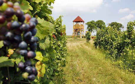Jižní Morava v malebných Lechovicích u Znojma v butikovém hotelu s neomezenou konzumací vína a polopenzí