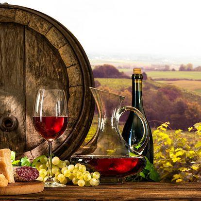 """Penzion """"V Zahraničí"""" na Jižní Moravě s neomezenou konzumací vína pro 2"""