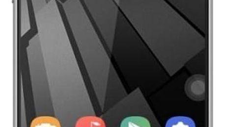 UMAX VisionBook P55 LTE, šedá