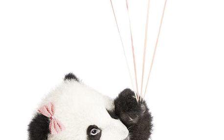 Nástěnná samolepka Dekornik Pink Panda