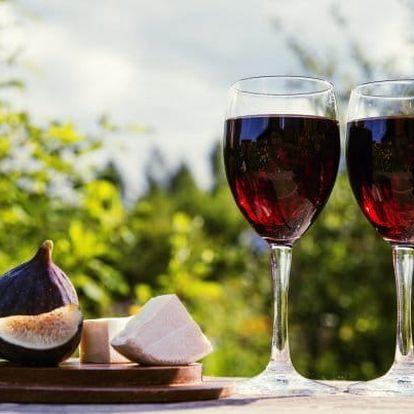 Vinařský pobyt u Znojma
