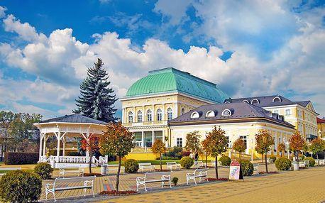 First minute: Okouzlující Františkovy Lázně v hotelu s wellness procedurami i vstupem do vodního zábavního parku