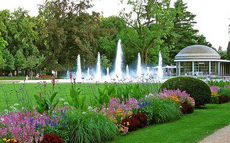 Poděbrady s relaxem a luxusem ve 4* hotelu v centrálním parku s řadou procedur, platnost až do prosince 2018