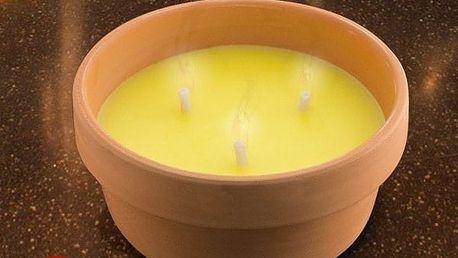 Citronelová Svíčka v Terakotovém Květináči 15 cm