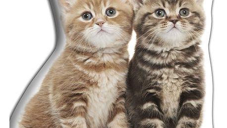 Polštářek Adorable Cushions Dvě koťátka