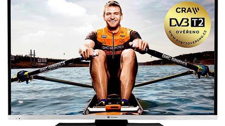 Televize GoGEN TVF 40N384 STWEB černá
