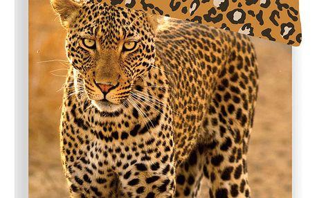 Jerry Fabrics povlečení Leopard 2017 140x200 70x90