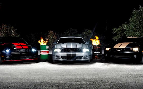 Mustangforyou