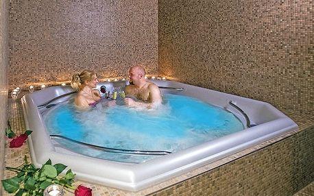 Karlovy Vary v hotelu obklopeném zelení s až 18 procedurami v moderním wellness centru a s polopenzí