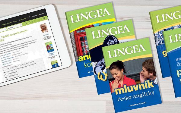 Angličtina XL on-line: Komplexní výukový balíček