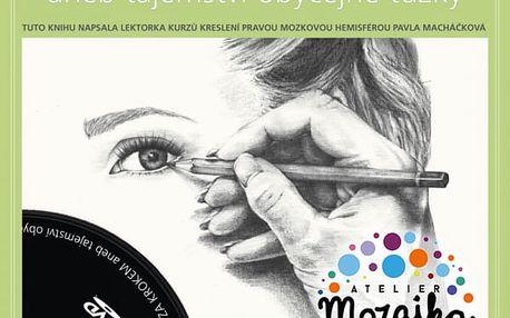 Online kniha + DVD Portrét krok za krokem aneb tajemství obyčejné tužky.