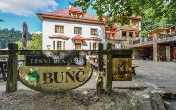 Lesní penzion Bunč