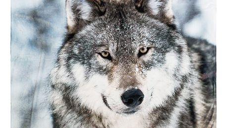 Koopman Deka Home & styling Wolf, 140 x 160 cm
