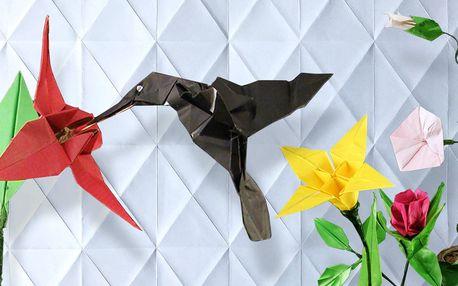 Kurz origami pro začátečníky i pokročilé