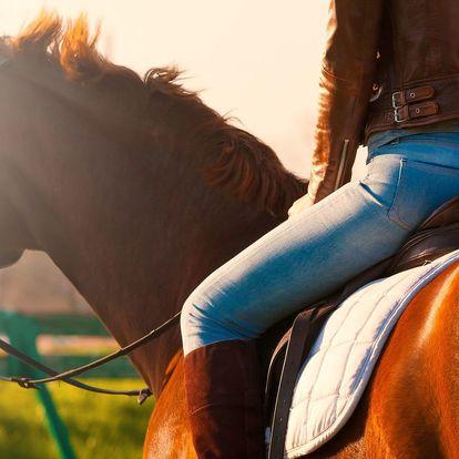 Hodinová vyjížďka na koni pro začátečníky i pokročilé