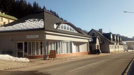 Hotel Albis ve Vrchlabí s polopenzí, vířivkou a degustací piva