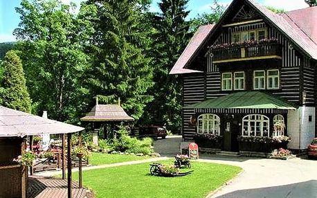 Wellness pobyt pro dva v 3* hotelu Tři Růže s polopenzí, finská sauna, vstup na bobovou dráhu.