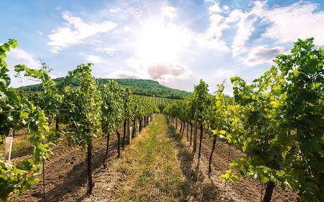 Odpočinek na jižní Moravě se snídaní a vínem