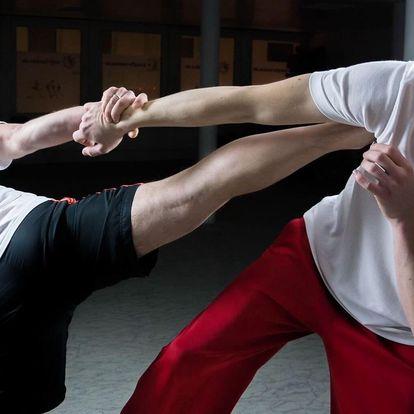 Nauč se čínské bojové umění Wing Chun