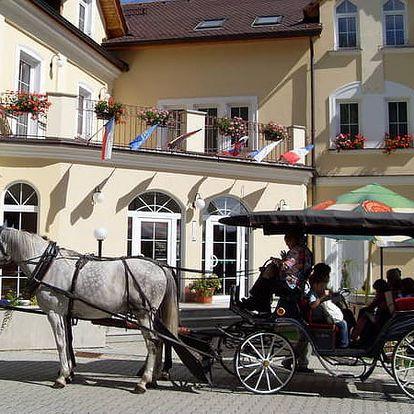 3denní pobyt s polopenzí ve 4* Hotelu Goethe Spa & wellness, bazén, procedury aj.