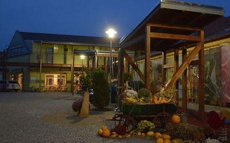 4denní pobyt v 3*Penzionu Welya pro jednu osobu, cyklostezka kolem Dunaje, bazilika Ostrihom.