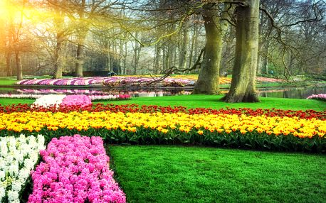 Velikonoční výlet za tulipány i do Amsterdamu