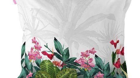 Povlak na polštář z čisté bavlny Happy Friday Tropic,60x60cm