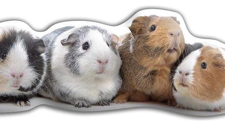 Polštářek Adorable Cushions Morčátka