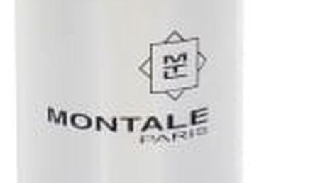 Montale Paris Vanille Absolu 100 ml parfémovaná voda tester pro ženy