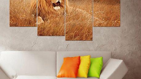 Obraz lva ze čtyř částí - bez podložek a rámů