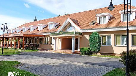 Maďarský Szentgotthárd u rakouských hranic s relaxací v termálních lázních a s chutnou polopenzí – platnost do prosince 2018