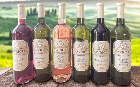 Výběr 3 nebo 6 vín vinařství Vavříček z Moravy
