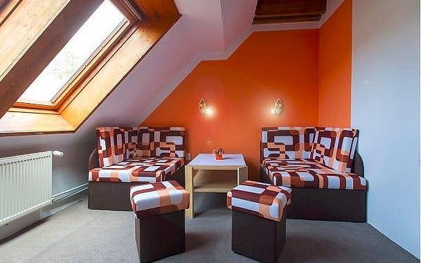 Hotel Aktiv***