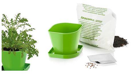 TESCOMA souprava pro pěstování bylinek SENSE, rukola