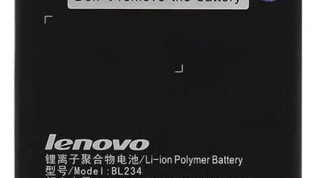 Baterie Lenovo BL234 pro P70, Li-Pol 4000mAh - bulk