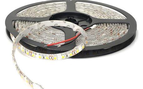 LED pás s diodami studená bílá