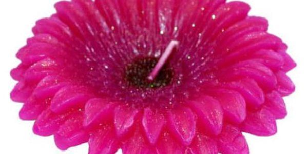 Svíčka květ Gerbery