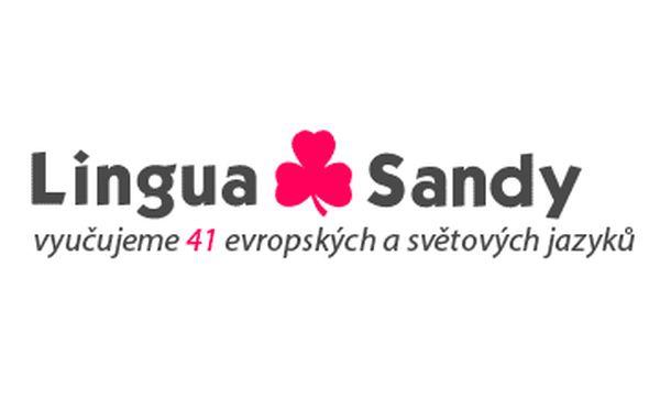Lingua Sandy - Jazyková škola