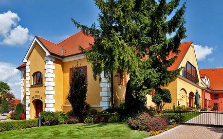 Pobyt na Moravě se snídaní, vínem i bazénem