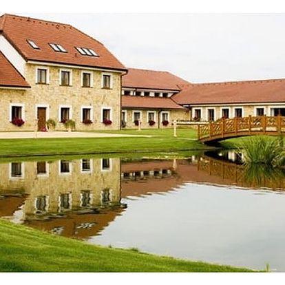 Letní wellness pobyt v Hotelu Lions Nesuchyně pro dva. Polopenze, vstup do bazénu, vířivka, sauna.