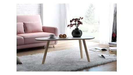 Konferenční stolek F1-50 120x60x30 cm