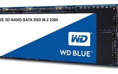 Western Digital Blue M.2 3D NAND 250GB (WDS250G2B0B)