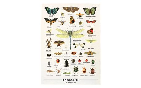 Utěrka z bavlny Gift Republic Insects